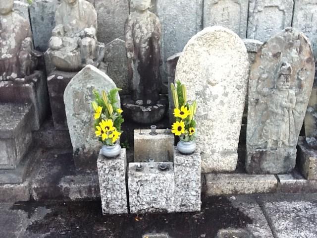 無縁仏墓に野の花を生けました。